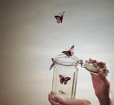 butterflies letting go